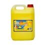 Sani-citron-5L